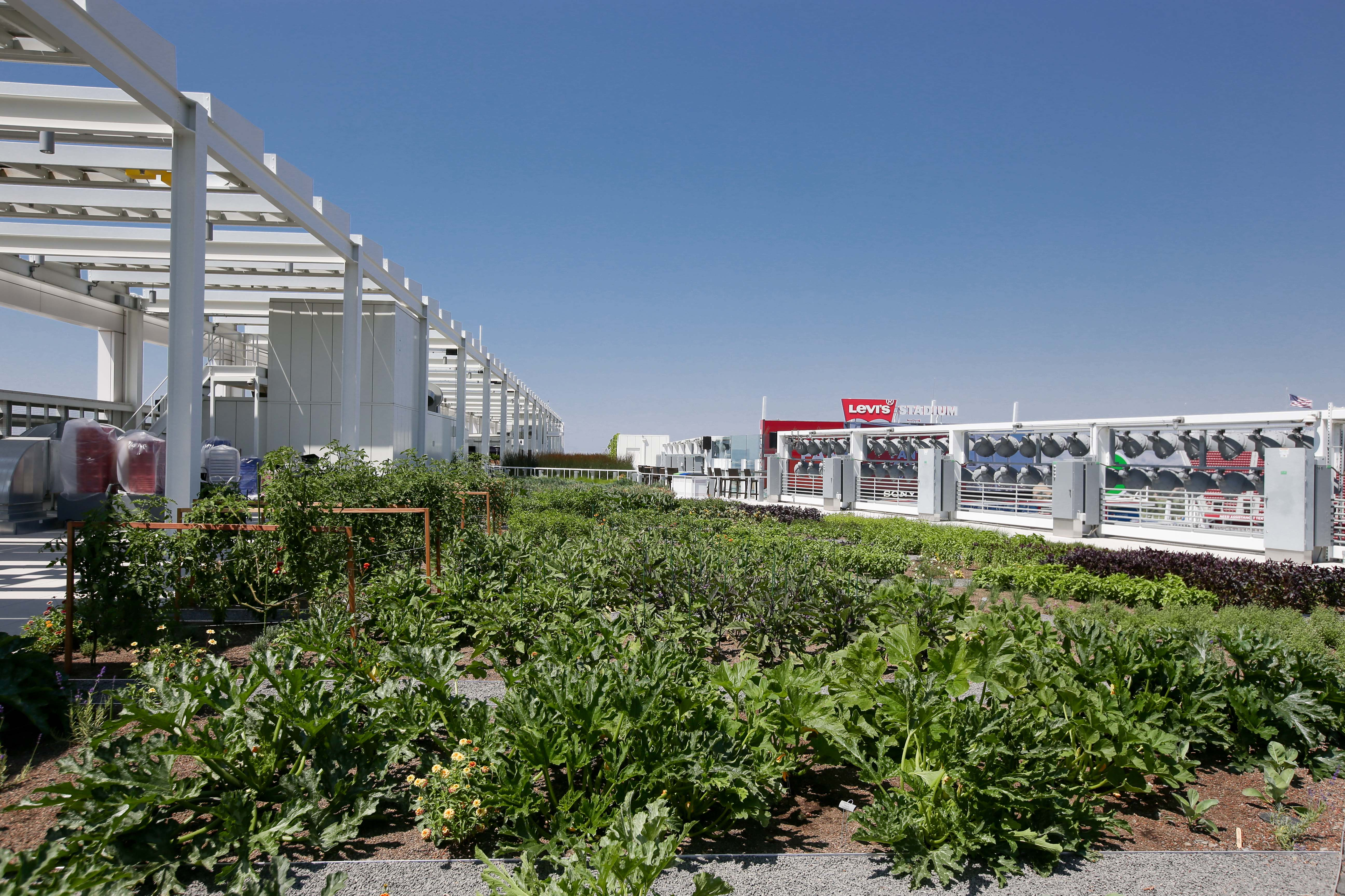 Levis Stadium Achieves Leed Gold Certification For Operations And